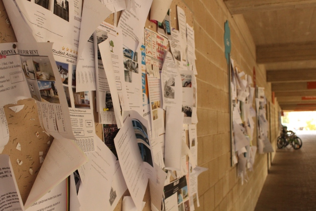 Cluttered noticeboards, the ire of Brodie Skalko. Photo by: Madura McCormack