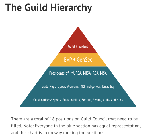 Student positions in The Guild. Graphics: Made in Inforgram by Madura McCormack