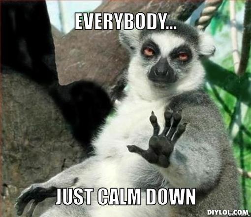 lemur-meme-generator-everybody-just-calm-down-1c5a00